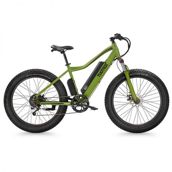 cnqr ebike green profile