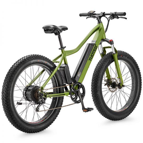 cnqr electric bike green model